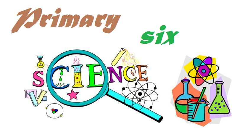 SCIENCE PRIMARY SIX 2