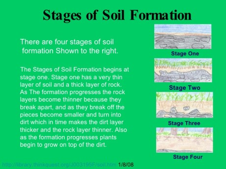 stages of soil formation