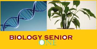 Biology Senior One 1