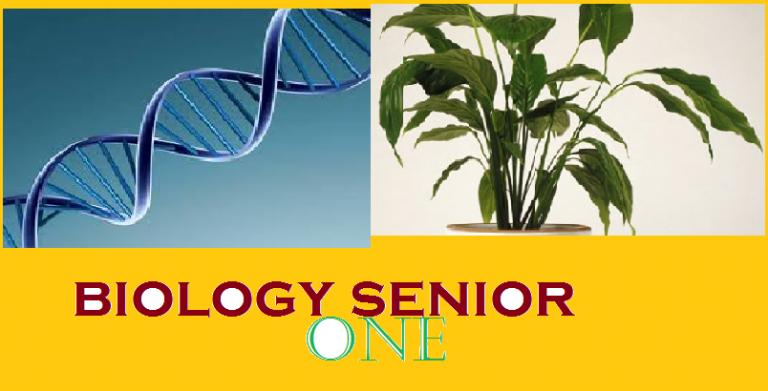 Biology Senior One 2