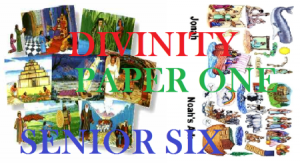 Access and Download All Lessons of Divinity Paper One Senior Six 1