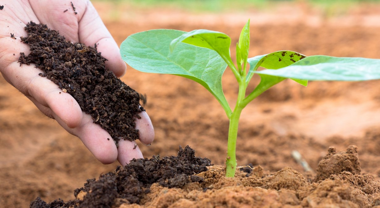 Mathematics - SOILS IN AGRICULTURE