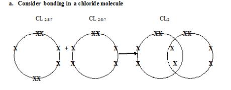 chloride bonding