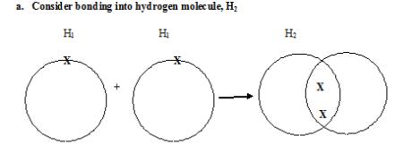 hydro bonding