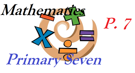 PRIMARY SEVEN MATHEMATICS 9