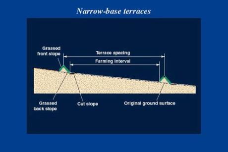 narrow ridge terrace