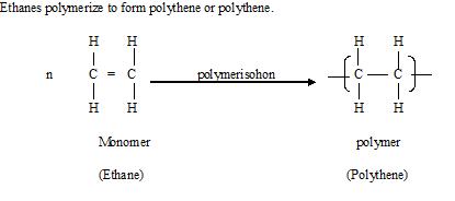 polymerise