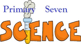 PRIMARY SEVEN (P.7) SCIENCE 4
