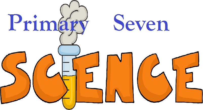 PRIMARY SEVEN (P.7) SCIENCE 2