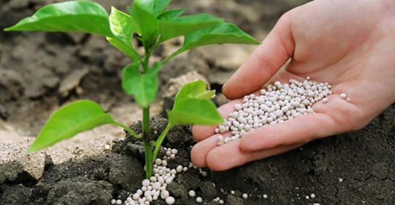 MICRO – NUTRIENTS IN AGRICULTURE O-LEVEL