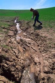 AGRICULTURE O-LEVEL SOIL EROSION