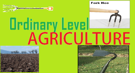 ORDINARY LEVEL AGRICULTURE 18