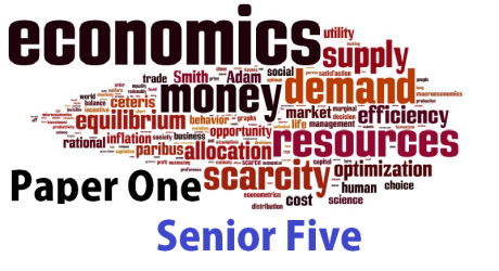 ECONOMICS PAPER ONE SENIOR FIVE (S.5) 17