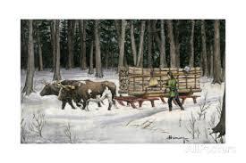 animal carrying logs