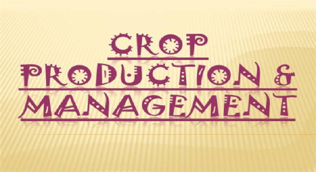 CROP PRODUCTION AND MANAGEMENT 11