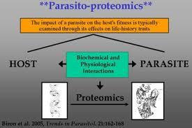 host parasite