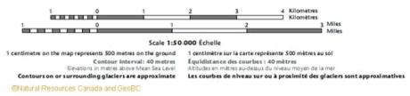 linear scale