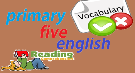 PRIMARY FIVE ENGLISH 12