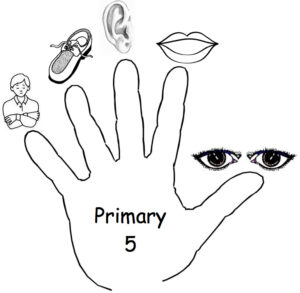 Access and Download all lessons of Primary Five 1