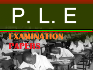 ACCESS AND DOWNLOAD UNEB PRIMARY LEAVING EXAMINATIONS FOR ALL THE FOUR SUBJECTS 1