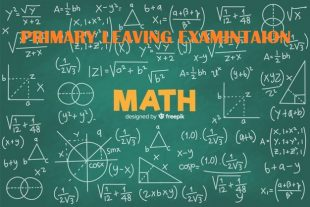 UNEB- PRIMARY LEAVING EXAMINATIONS MATHEMATICS REVISION QUESTIONS 3