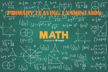 UNEB- PRIMARY LEAVING EXAMINATIONS MATHEMATICS REVISION QUESTIONS 8