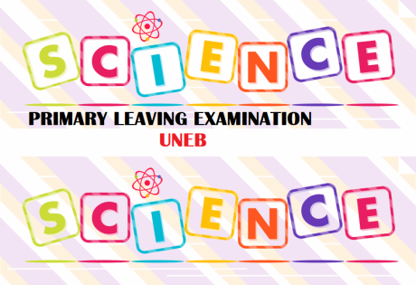 UNEB- PRIMARY LEAVING EXAMINATIONS SCIENCE REVISION QUESTIONS 13
