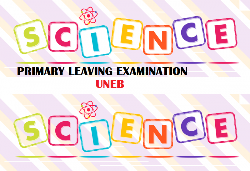 UNEB- PRIMARY LEAVING EXAMINATIONS SCIENCE REVISION QUESTIONS 2