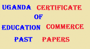 UGANDA CERTIFICATE OF EDUCATION COMMERCE PAST PAPERS 4
