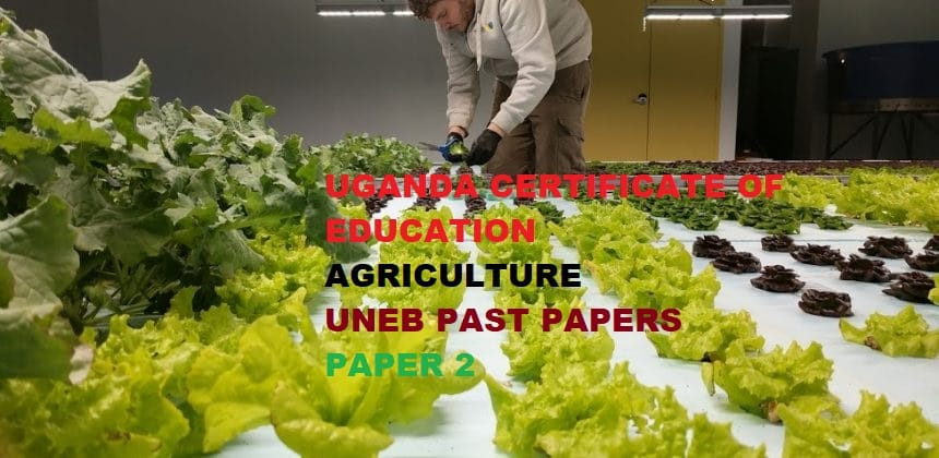 UGANDA CERTIFICATE OF EDUCATION AGRICULTURE PAST PAPERS PAPER 2 2