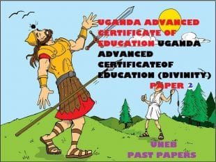 UGANDA ADVANCED CERTIFICATE OF EDUCATION CHRISTIAN RELIGIOUS EDUCATION (DIVINITY) PAST PAPERS PAPER 2 30