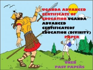 UGANDA ADVANCED CERTIFICATE OF EDUCATION CHRISTIAN RELIGIOUS EDUCATION (DIVINITY) PAST PAPERS PAPER 4 32
