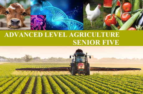 ALAGRIC5: ADVANCED LEVEL AGRICULTURE SENIOR FIVE 5