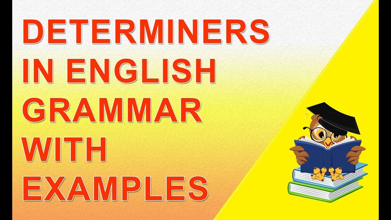 English grammar determiners