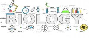 Biology S1